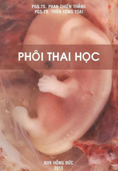 phoi-thai-hoc-dh-yd-tran-cong-toai
