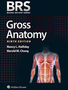 brs-gross-anatomy_9e